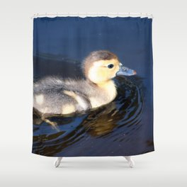 Cute Duckling Swimming in a Pond Shower Curtain