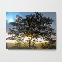 Sunrise Corcovado National Park, Costa Rica Metal Print