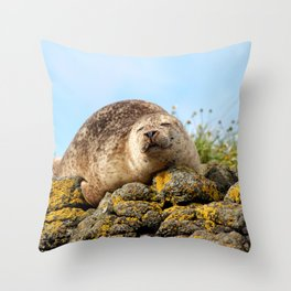 Seal at Dunvegan Castle, Scotland Throw Pillow