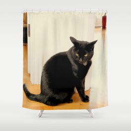Any Witch Way Shower Curtain
