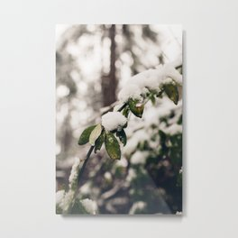 Breathing nature (VII) Metal Print