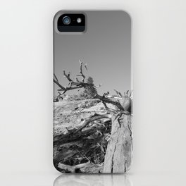 Lost Life iPhone Case