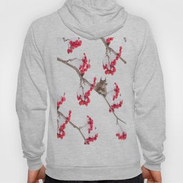 Cute Squirrel With Red Rowan Berries On A White Background #decor #society6 #buyart Hoody