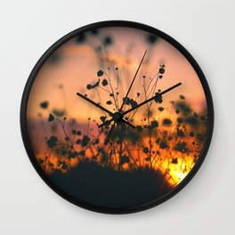 Poppy flowers sunset Wall Clock