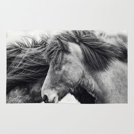 Icelandic Horse Photograph in Black and White Rug