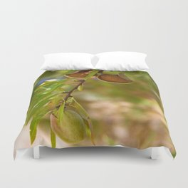 Almond Harvest - Ripe Almonds On A Tree Branch Duvet Cover