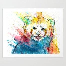 Red Panda - animal painting, illustration, colorful Art Print