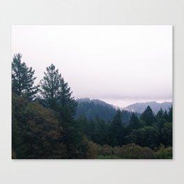 Landscape in Sonoma Canvas Print