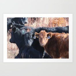 Moo Times Two Art Print