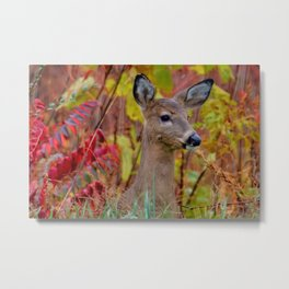 """""""Deer In The Fall Foliage"""" by S. Michael Metal Print"""