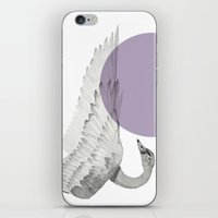 swan iPhone & iPod Skins featuring swan by morgan kendall