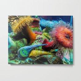 Aquarium Creatures Metal Print
