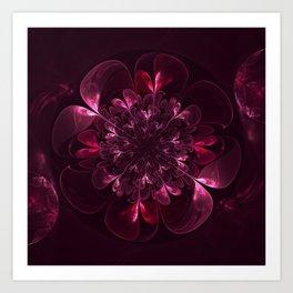 Flower In Bordo Art Print