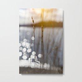 Inner Light - Before Sunset Metal Print