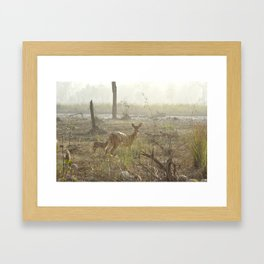 Chittel Deer and her fawn Framed Art Print