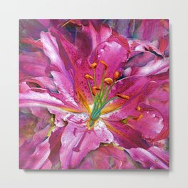 Star Gazing Star Lily Metal Print