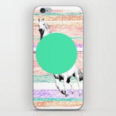 Horse, horse. iPhone & iPod Skin