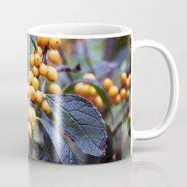 Longwood Gardens Autumn Series 26 Coffee Mug