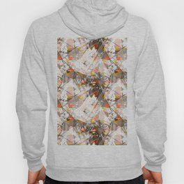 Abstraction. The strokes of paint. 1 Hoody