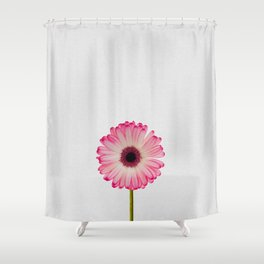 Daisy Still Life Shower Curtain