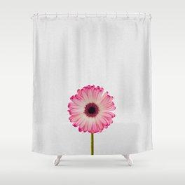Daisy Still Life Shower Curtain