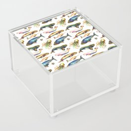 Whales and a Little Squid Acrylic Box