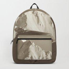 Alaskan Mts. - Mono I Backpack