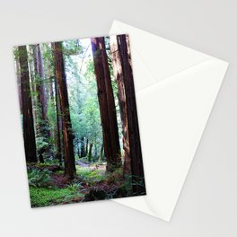 Muir Woods 2 Stationery Cards