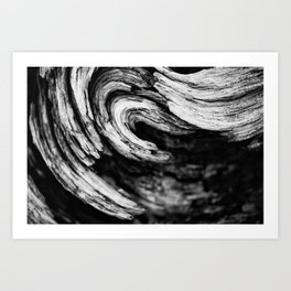 Burl With A Curl. Art Print