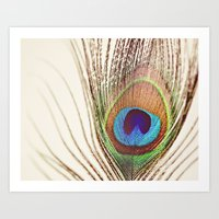 peacock Art Prints featuring Peacock by Laura Ruth