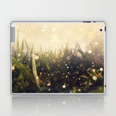 Hidden in the Magic Garden Laptop & iPad Skin