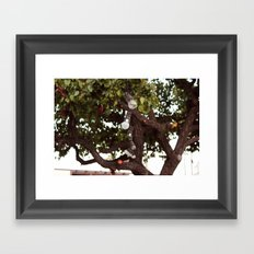 Lumières Framed Art Print