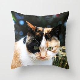 Sweet Cat Portrait Throw Pillow