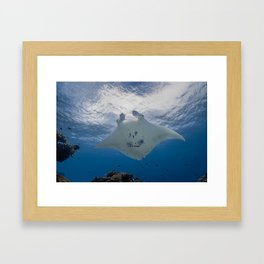 The one with the smile Framed Art Print