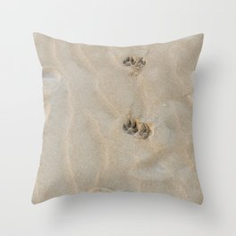 Dog paws prints on the sand in winter just after dawn Throw Pillow