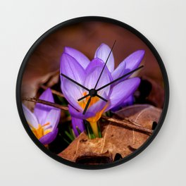 Concept nature : Et purpura claritate Wall Clock