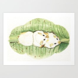 Honduran White Bats Art Print