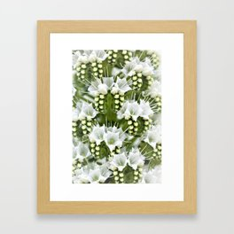 White petals like Snowflakes by Reay of Light Framed Art Print