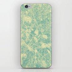 424 iPhone & iPod Skin