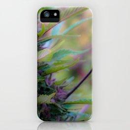 Hemp My Passion iPhone Case