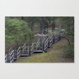 Dogwood Staircase Canvas Print