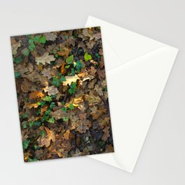 Warm Autumn Stationery Cards