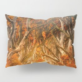 The Magic Forest Pillow Sham