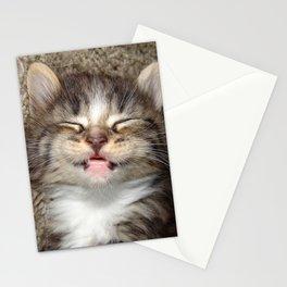 Kitten Smile Stationery Cards