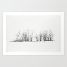 Pure Winter Art Print