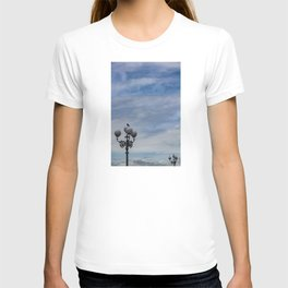 Large space of free sky and two small luminaries where a group of pigeons have posed. T-shirt