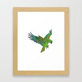 Green Parrot Framed Art Print