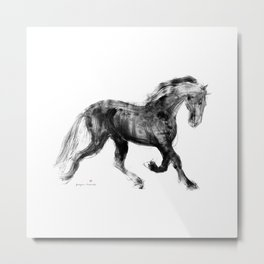 Horse (Friesian Colt) Metal Print