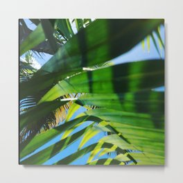 Lunch under the trees  Metal Print