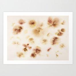 Gladiolas, Come Into Bloom Art Print